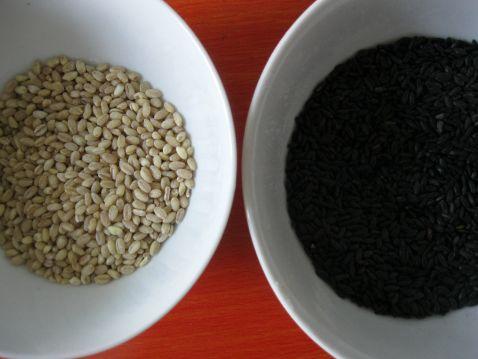鲜枣黑米粥的做法大全