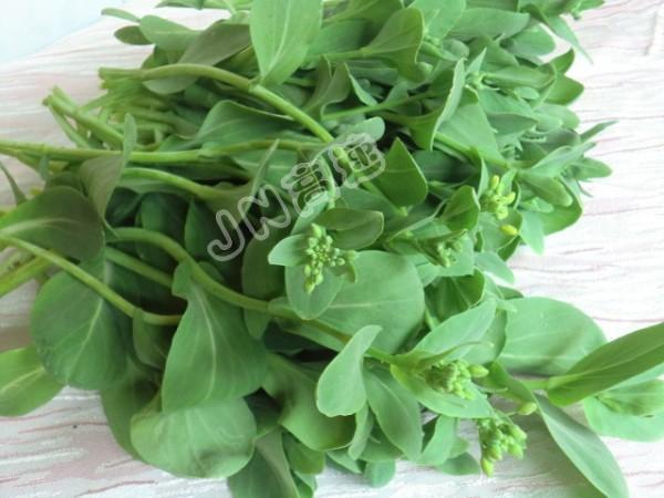 蚝油香菇油菜苔的做法图解
