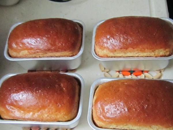 橙香燕麦小吐司面包怎样煸