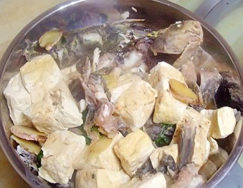 鲜美鱼煮豆腐怎么煮